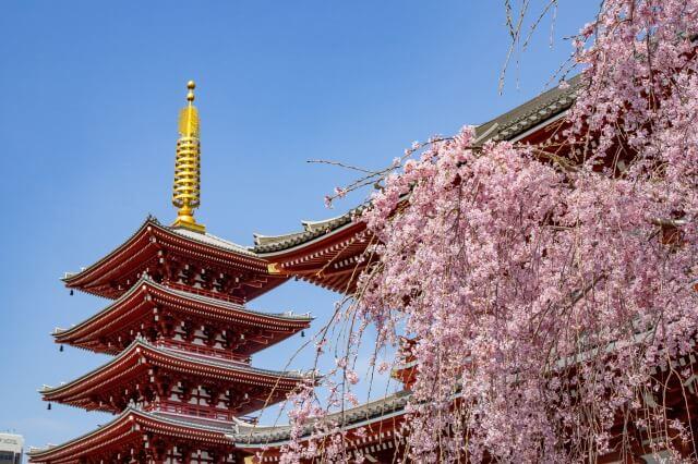 浅草の浅草寺の境内を英語で説明