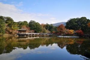 奈良を英語で説明 観光地として有名な古都を5つの例文で紹介