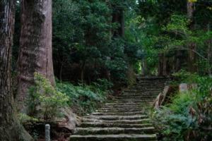 熊野古道を英語で説明 熊野三山を参拝しに行く世界遺産の道を紹介
